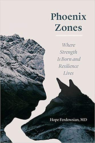 Phoenix Zones: Where Strength Is Born and Resilience Lives Hardcover – April 6, 2018