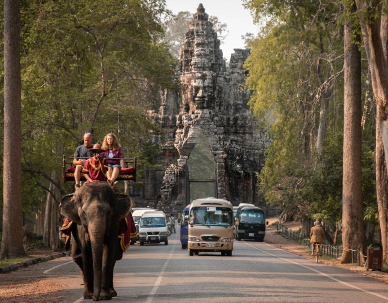 Cambodia's Biggest Attraction To Ban Elephant Rides Following Animal's Death